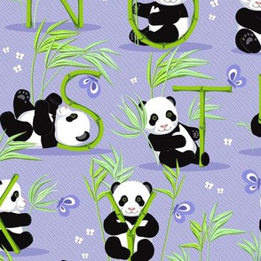 Panda and letters 7