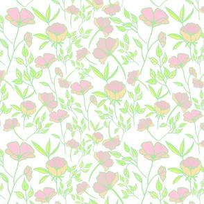Bright spring pastel poppy