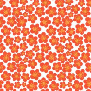 Cherry blossom season orange