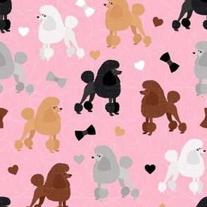 Poodles Bows and Hearts Mixed Coats Pink