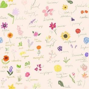 Artist Sketchbook of Summer 2019 Garden