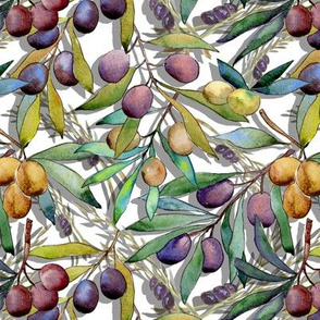 small scale PROVENCE OLIVES WATERCOLOR WHITE FLWRHT