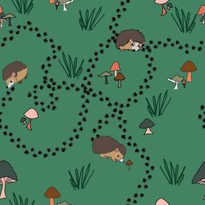 Hedgehog trails