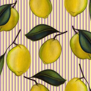 Lemonpattern Stripes Purple Medium