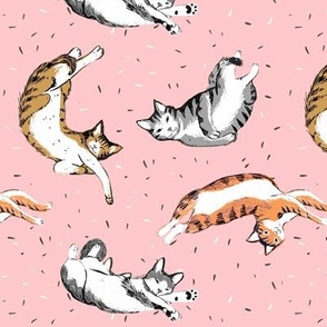 Cats-Shoes pink