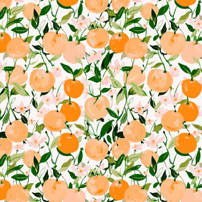 Spring Clementines