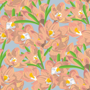 Pattern with pink crocuses