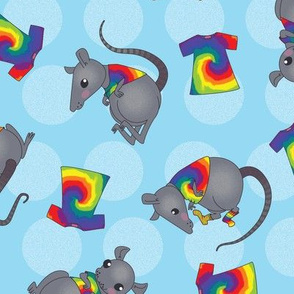 Rats in tie-dye shirts