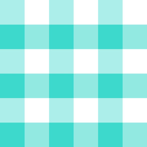 Country turquoise big plaid