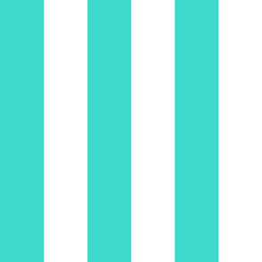 Country turquoise big stripe