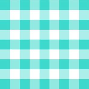 Country turquoise medium plaid