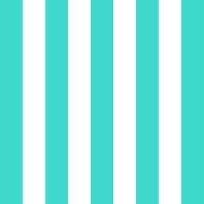 Country turquoise medium stripe