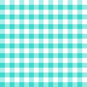 Country turquoise small plaid