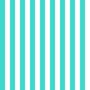 Country turquoise small stripe