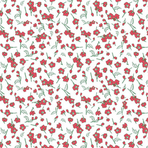Red Petite Toss Floral