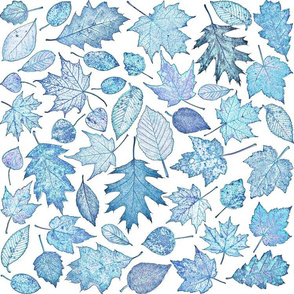 leaf etchings - blue on white