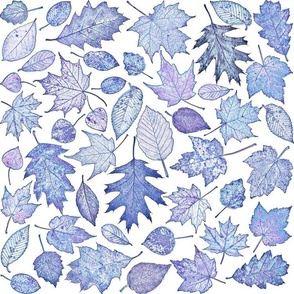 leaf etchings - blue-violet on white