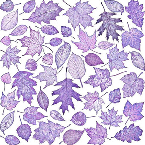 leaf etchings in purple on white