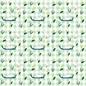 Spring Green Duck Gingham