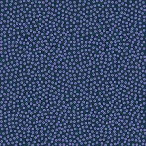 Polka dots / Blue / Purple