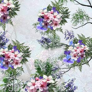 Pink_purple_jacaranda tree flowers