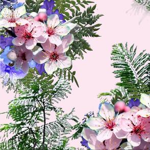 Pink_purple_jacaranda flowers in L pink B