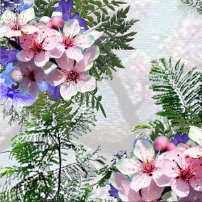 pink_purple_jacaranda flowers