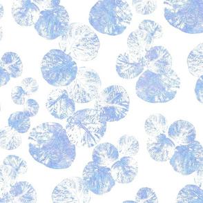 Sea Grapes Serene Blue on White 300