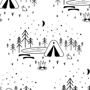 Minnesota Black and White Camping Nature Scene