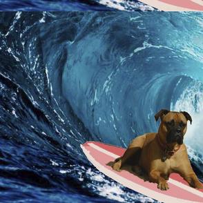 Thor Surfing-ed