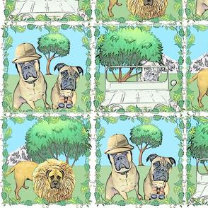 Dogs on Safari