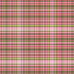 Pink & Green Plaid