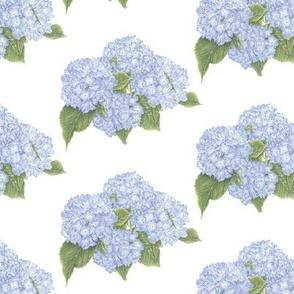 Hydrangea Pattern-Blue