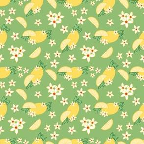 Lemonade Pattern 2