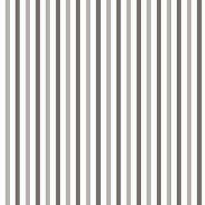 Beetles_grey_stripes