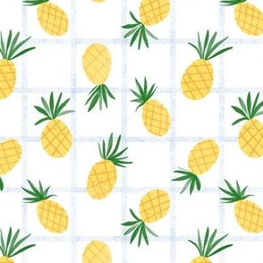 Pineapple Grid
