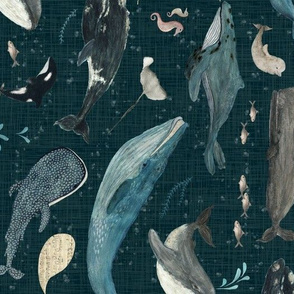 Whale song dark blue large {Rotated}