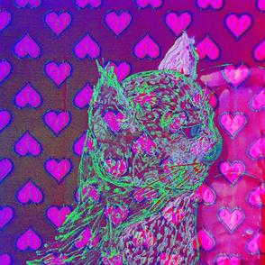Oizy greenich cat Pink