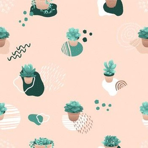 Succulents with Abstract & Geometric Shapes