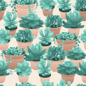 Succulents in Pots, dusty rose
