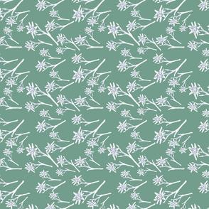 Edelweiss Cool Green
