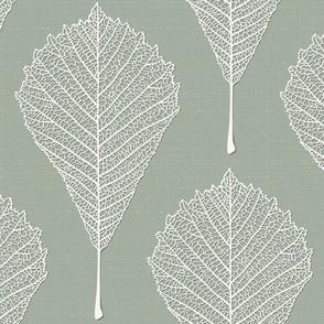 cut leaf(sage)