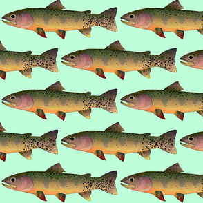 Cutthroat Trout on light green