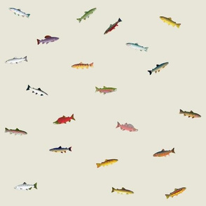 World of Trout and Salmon on khaki
