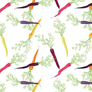 Cool Colorful Carrots