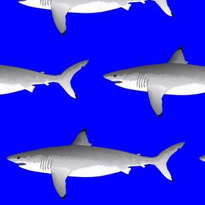 Great White Shark v2020 dark blue