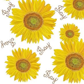 Sunflower pray on white large