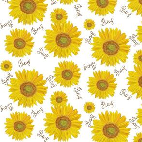 Sunflower pray on white med