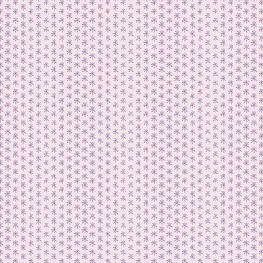 Mini Purple Daisies on a Lilac Background