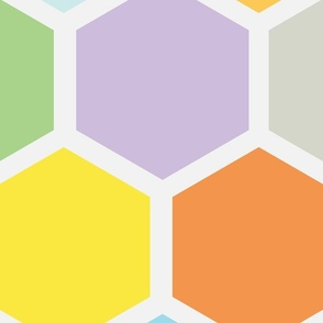 20-05x Jumbo Hexagon Quilt Panel Rainbow